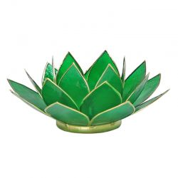 Loto illuminazione d'atmosfera 4° chakra verde smeraldo