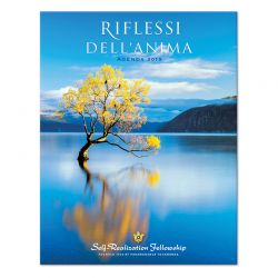 Riflessi dell'anima 2019